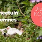 Kind & Koffie: Theetuin Eemnes