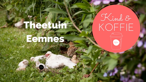 KIND & KOFFIE Theetuin Eemnes